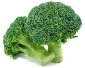 Benefits of Broccoli – The Muscle and Fitness Benefits of Broccoli