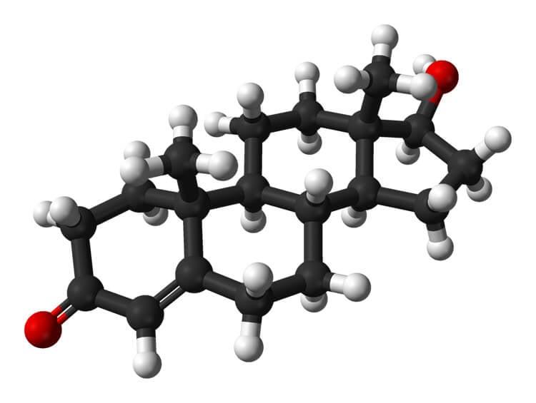 Why Increase Testosterone? - image Testosterone