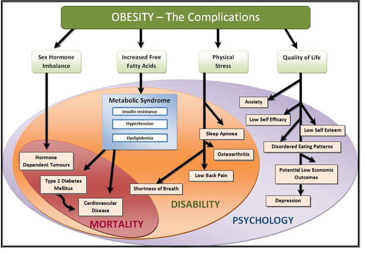 Study Depression Obesity Hypertension >> 5 Depression And Obesity Links You Should Know About