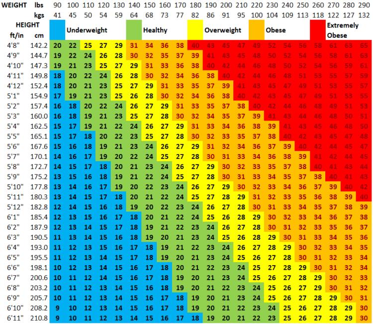 fitness assessment BMI