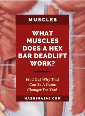 What Muscles Does A Hex Bar Deadlift Work