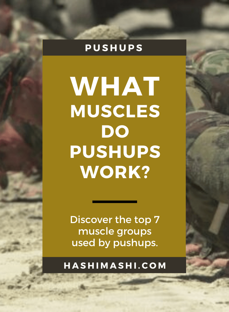 What Muscles Do Pushups Work - Image Credit US Army