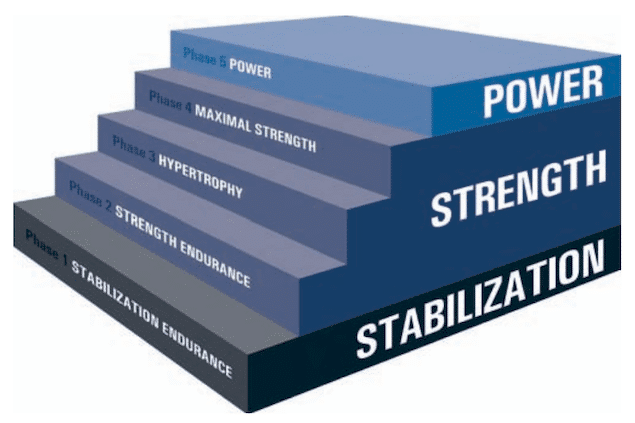 NASM OPT Model Image Credit NASM Study Guide
