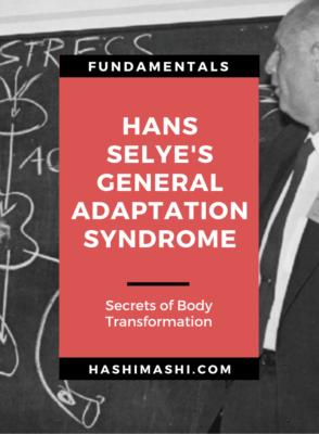 Hans Selye's General Adaptation Syndrome - Secrets of Transformation Image Credit HashiMashi.com