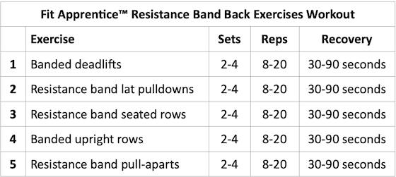 Resistance Band Back Exercises Credit HashiMashi.com