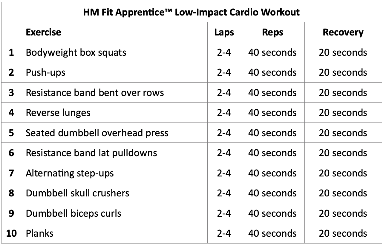 cardio exercises for bad knees HM Fit Apprentice Workout
