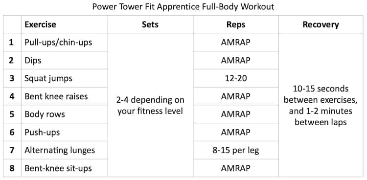 Power Tower Fit Apprentice Full-Body Workout Credit HashiMashi.com